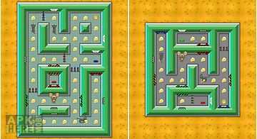 Amazing escape: mouse maze