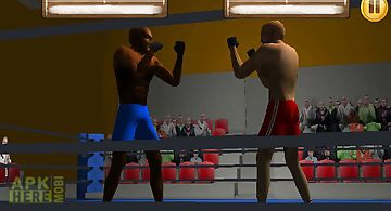 Box fighters 3d
