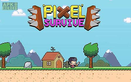 pixel survive