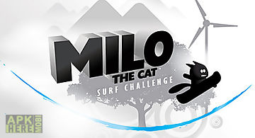Milo the cat: surf challenge