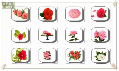 camellia flowers onet classic game