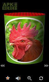 moobox : funny animal soundbox