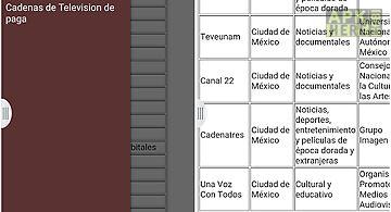 Televisiones de mexico