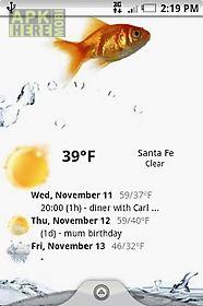 weather forecast widget
