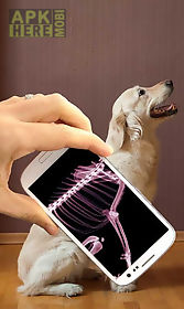 human x ray scanner (prank)