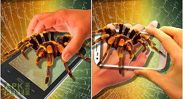Spider on hand. camera prank