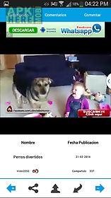 lolmood videos images joke