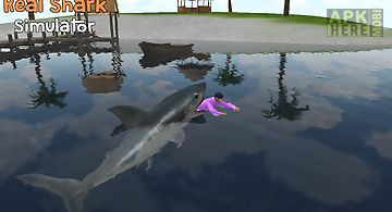Real shark simulator 3d