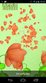 blooming flower live 3d wallpaper  live wallpaper