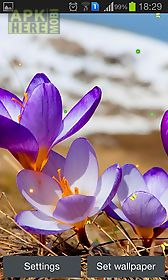 early spring: nature live wallpaper