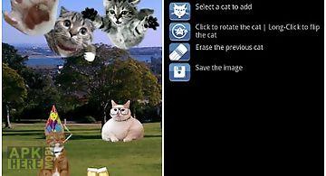 Add a cat free - photo editor