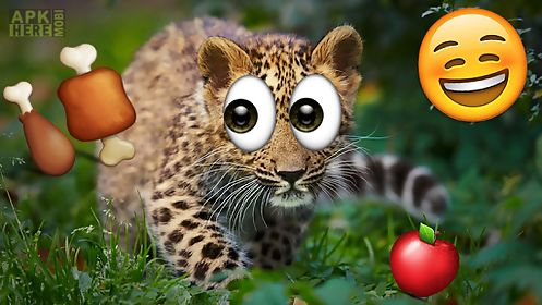 Emoji photo sticker maker pro for Android free download at Apk Here