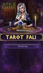 tarot - tarot reading