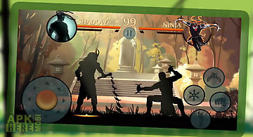 Ninja shadow fight 3