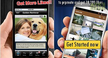 Get more instagram likes now for Android free download at Apk Here