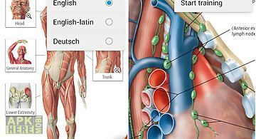 Sobotta anatomy atlas