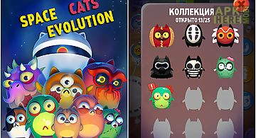 Space cat evolution: kitty colle..