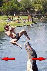 funny pics - funny photo