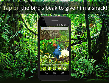 ur 3d cute jungle birds hd