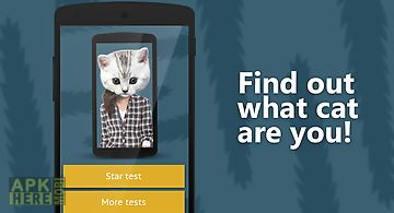 Face scanner: what cat 2