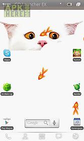 whitecat live wall-paper