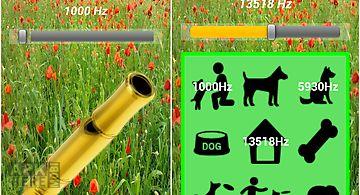 Dog whistle (golden)