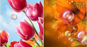 Flowers 2015 Live Wallpaper