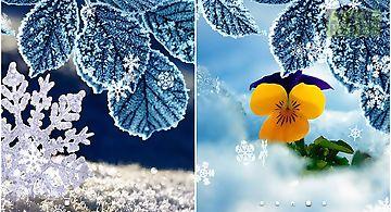 Winter by amax lwps Live Wallpap..
