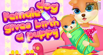 Dog birth animal games