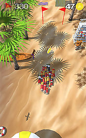 corgi stampede