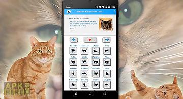 Human to cat sounds translator
