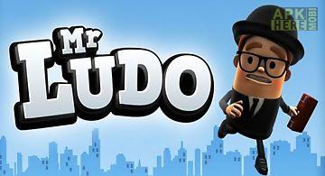 Mr. ludo