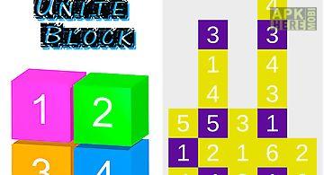 Puzzle unite block