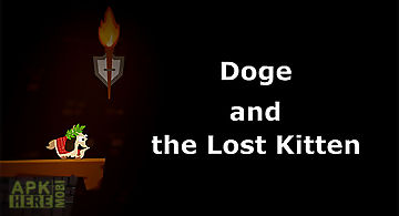 Doge and the lost kitten