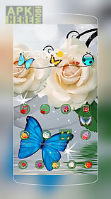 white rose butterfly