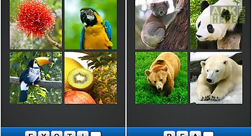 Find the word! ~ 4 pics 1 word