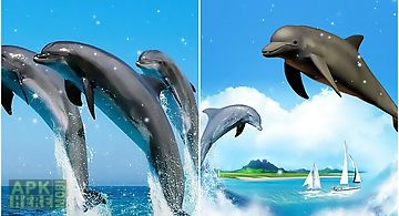 Dolphin 3d Live Wallpaper