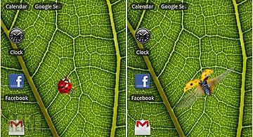 Ladybug -  Live Wallpaper
