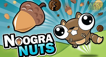 Noogra nuts - the squirrel