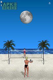 beach volleyball lite