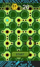 circuit jungle