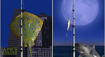 Big night fishing 3d lite