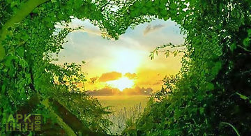 Images of love - nature