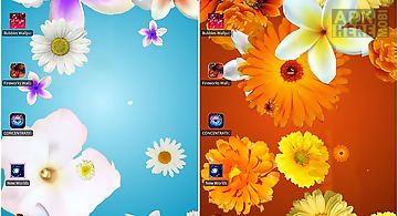 Flowers Hd Live Wallpaper For Android Free Download At Apk Here