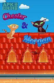 chester & morgan