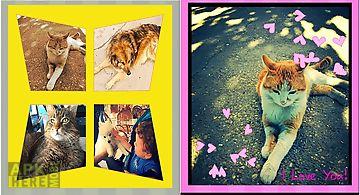 Premium photo expert –phot..