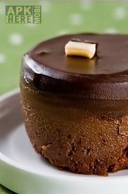 delicious chocolate cake aa