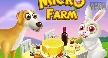 Micro farm 2015