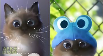 Peper kitten