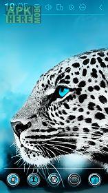 blue eyes atom theme